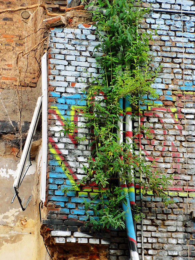 ottostraße-graffiti-haus-5