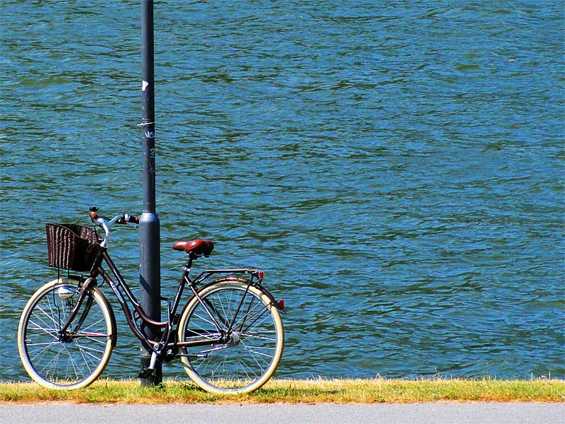 fahrrad-am-mainufer-in-frankfurt