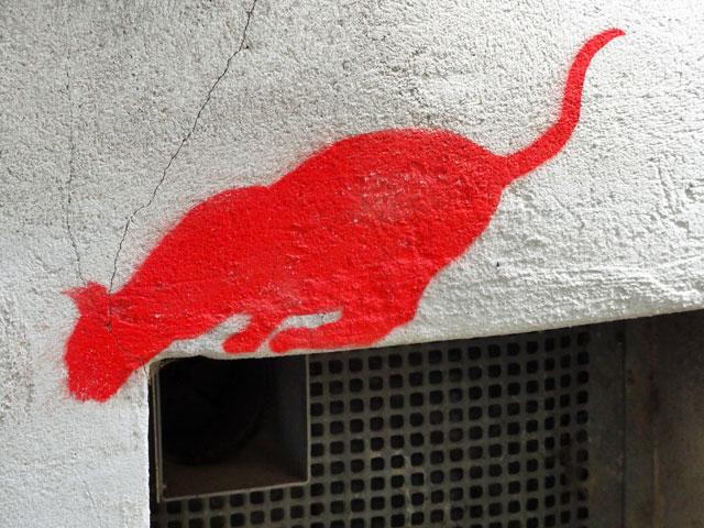 streetart-in-marburg-katze-2