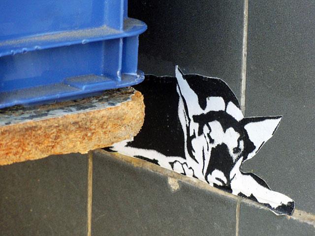 streetart-marburg-hund