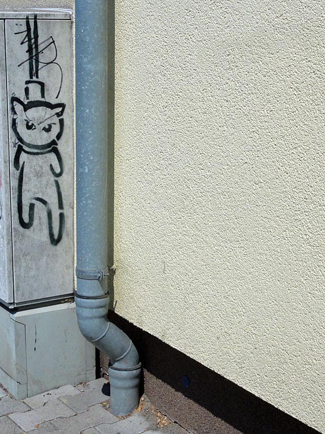 el-bocho-cat