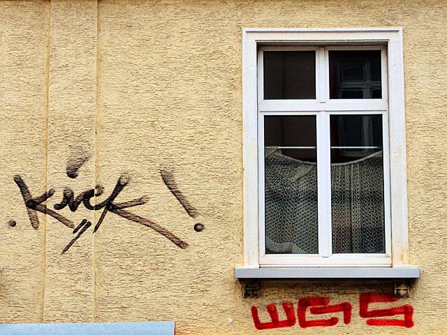 kick-wgs