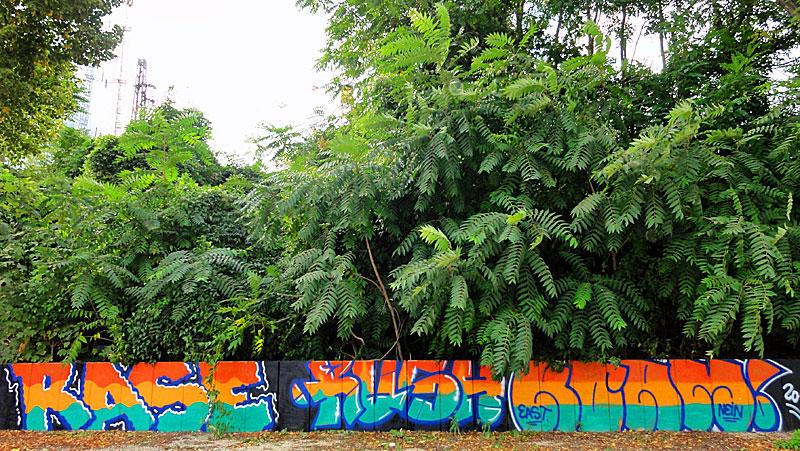 rase-rush-roam-frankfurt