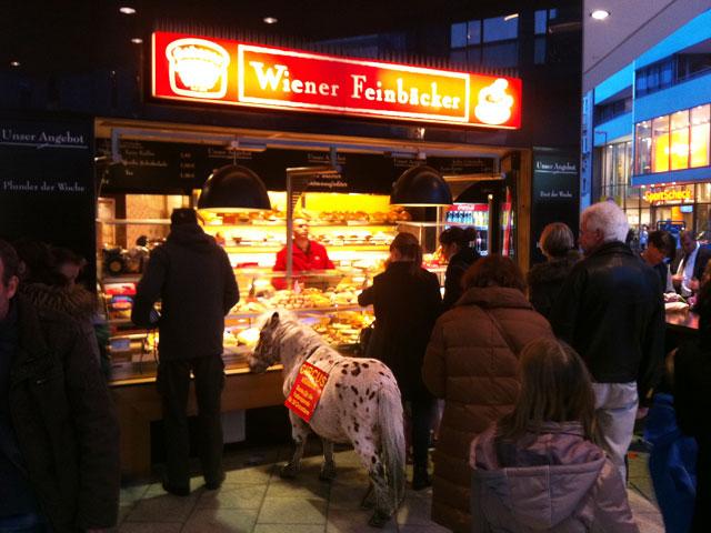 pony-bei-karstadt-auf-der-zeil-frankfurt-copyright-beachten