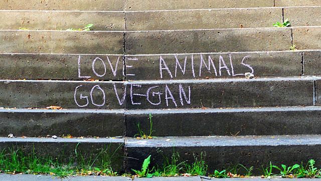 vegan-treppe-frankfurt-6