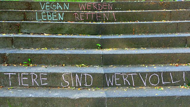 vegan-treppe-frankfurt-7