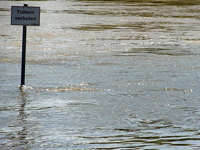 Hochwasserlage am Mainufer in Frankfurt-Höchst