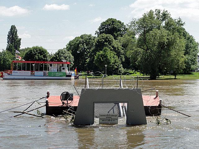 hochwasser-in-frankfurt-höchst-5