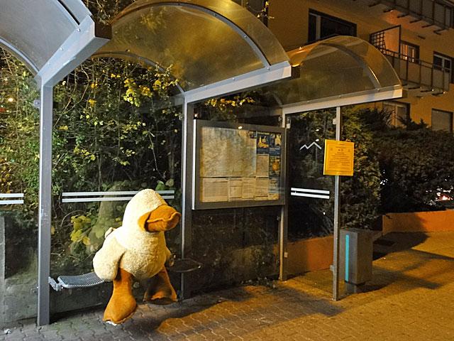 warten-an-der-busstation-in-frankfurt-copyright-beachten