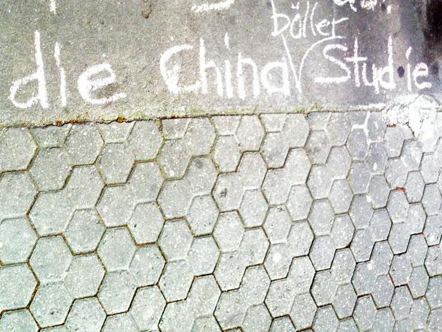 die-china-studie-die-chinaböllerstudie