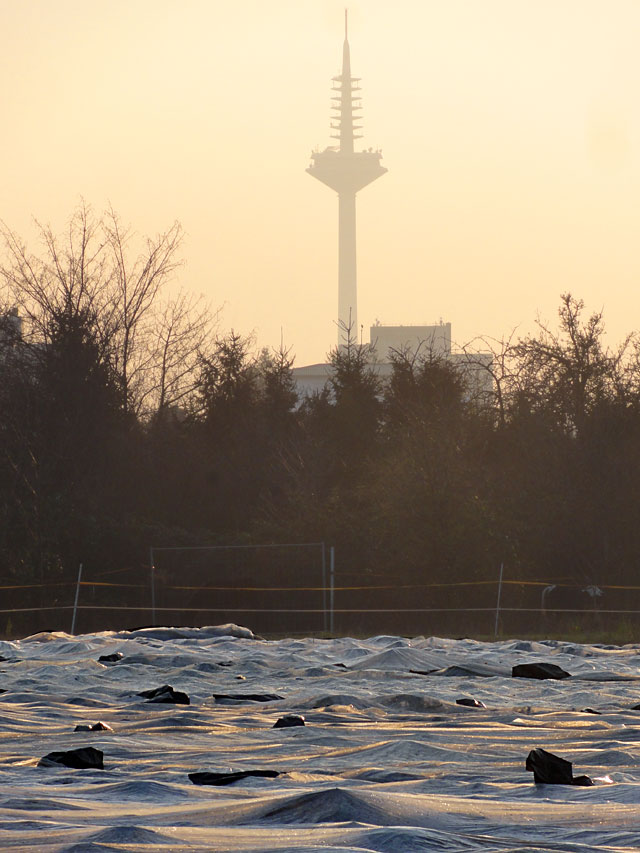 frankfurt-fotos-feldblick