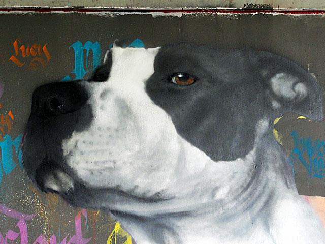 FRANKFURT-GRAFFITI-hunde-friedensbrücke-foto-06