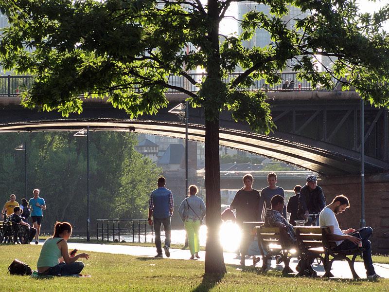 Das Mainufer im Sommer.