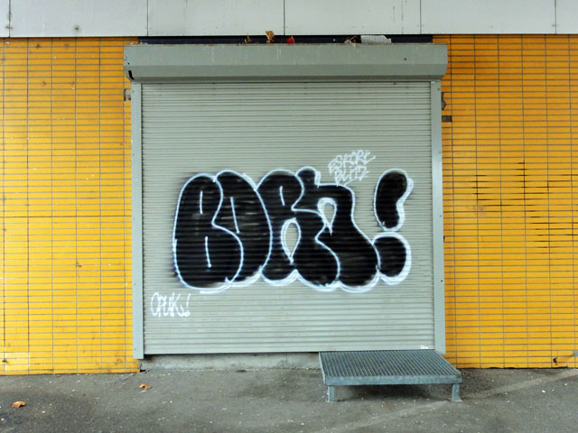 graffiti-in-frankfurt-shutter-foto-19-born