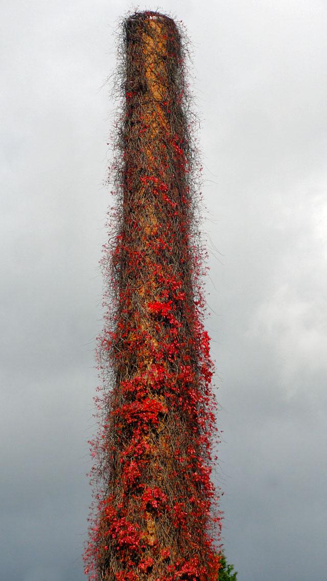 Herbst in Frankfurt 2014