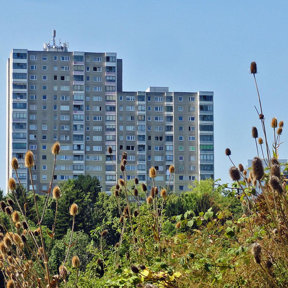 Hichhäuser in Bornheim