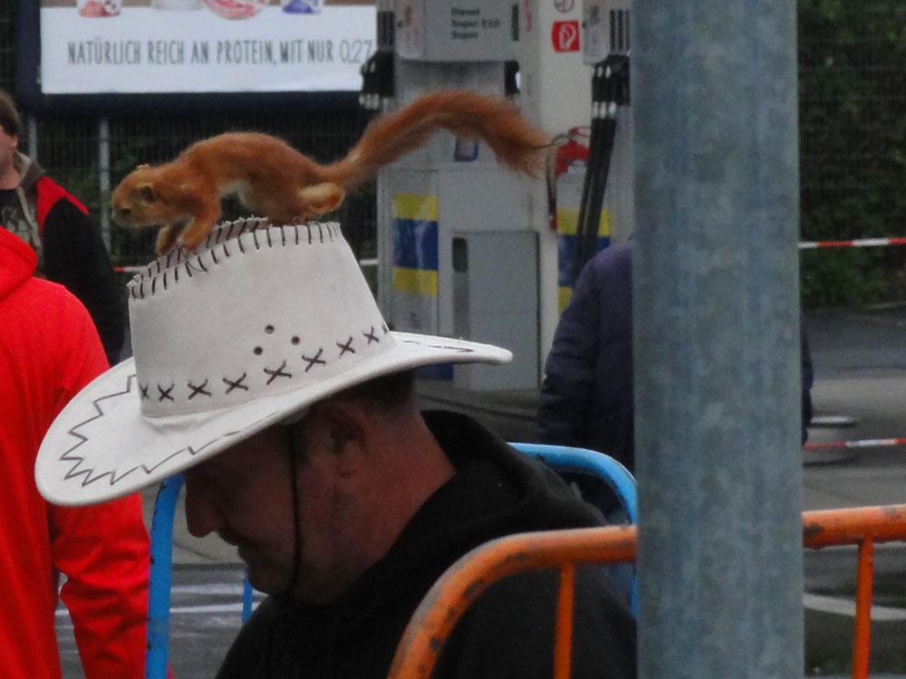 Auf dem Flohmarkt bei der Metro gesehen: Hut mit Eichhörnchen