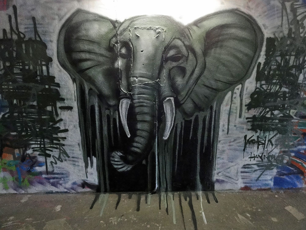 elefant-graffiti-hall-of-fame-frankfurt-ratsweg-unterfuehrung