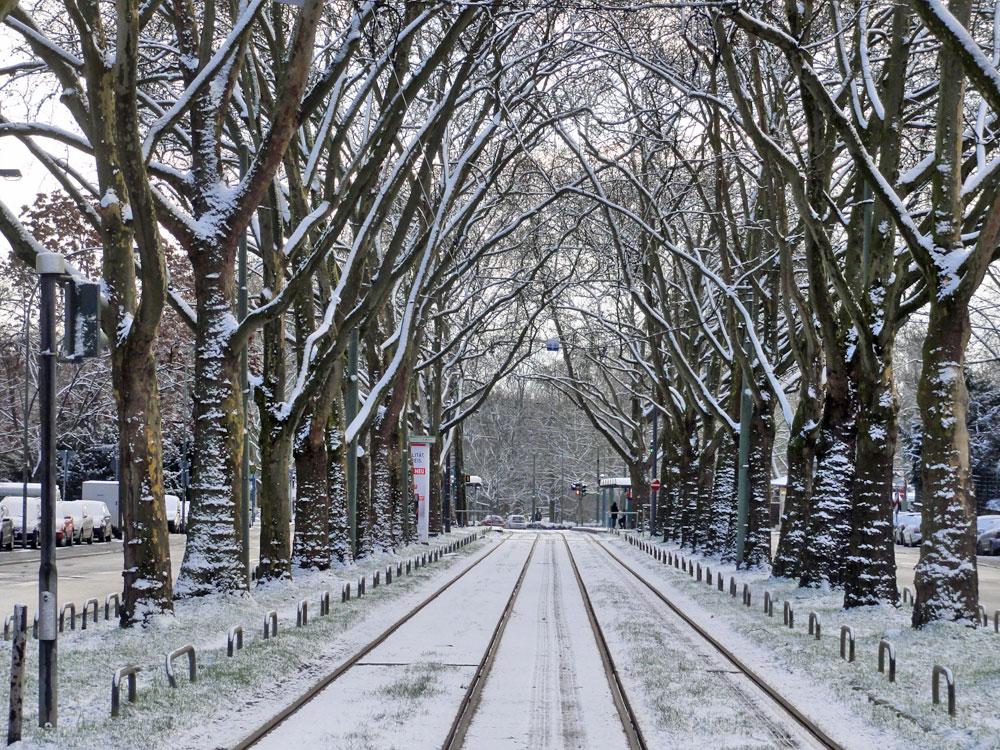 Schnee in Frankfurt 2016 - Bornheim
