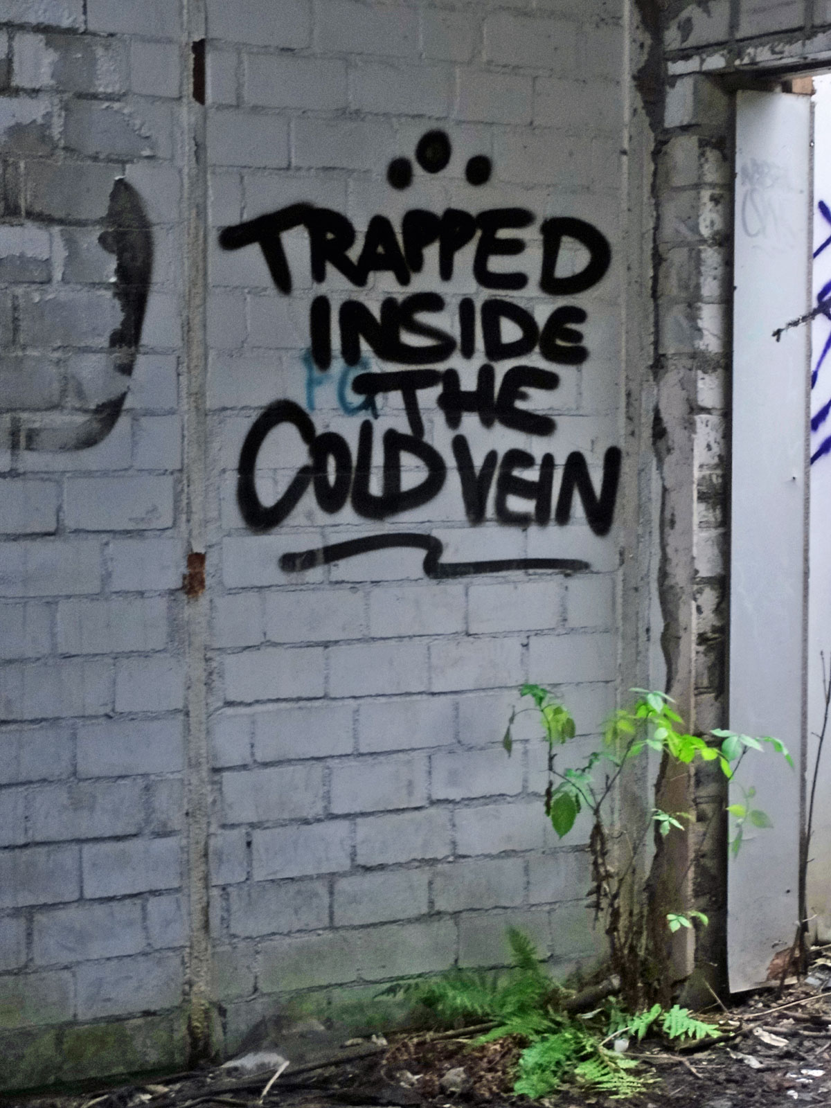 Trapped inside the cold vein - Graffiti in den Teves Werken