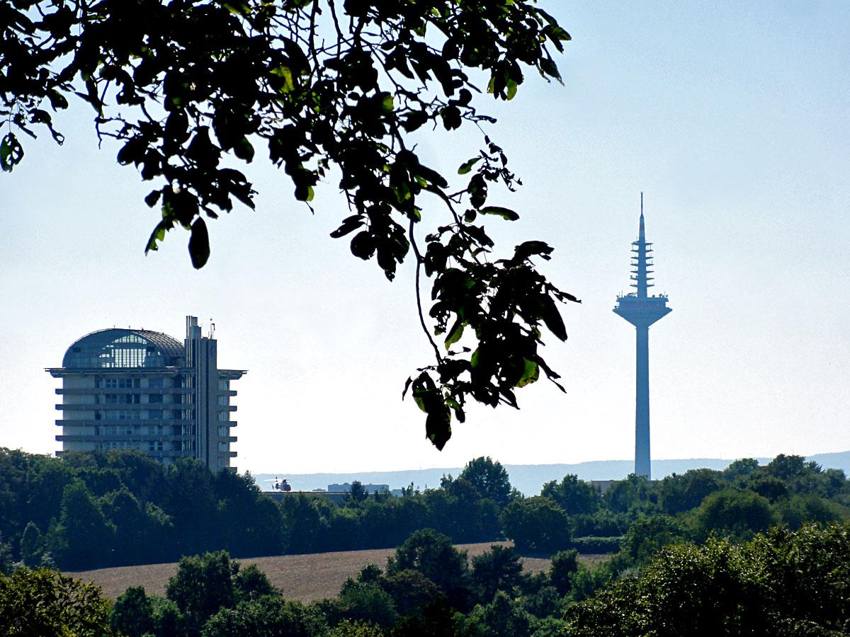 Blick auf BGU und Fernsehturm vom Lohrberg aus