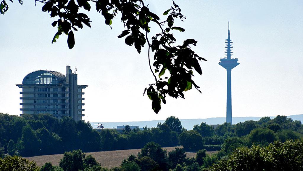 ausblick-vom-lohrberg-auf-dem-fernsehturm