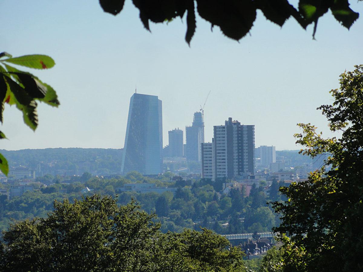 Neue EZB und neuer Henninger Turm vom Lohrberg aus gesehen
