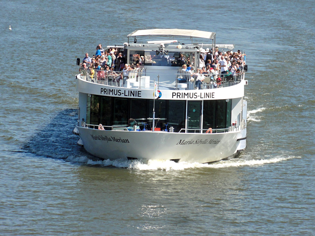 Schiff der Primus-Linie auf dem Main
