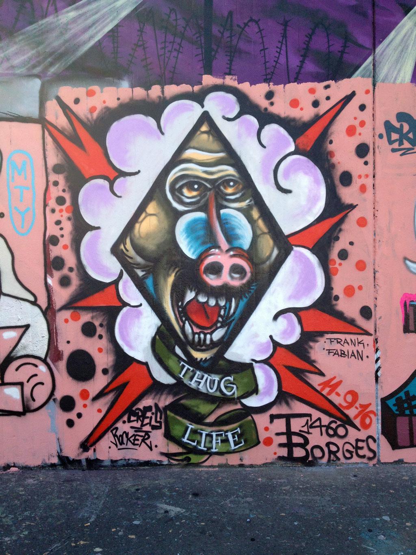 thug-life-pavian-graffiti-hall-of-fame-am-ratswegkreisel