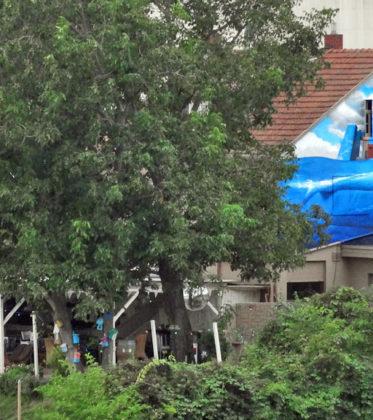 Blaues Wasser - Graffiti mit Skyline und Wale im Main