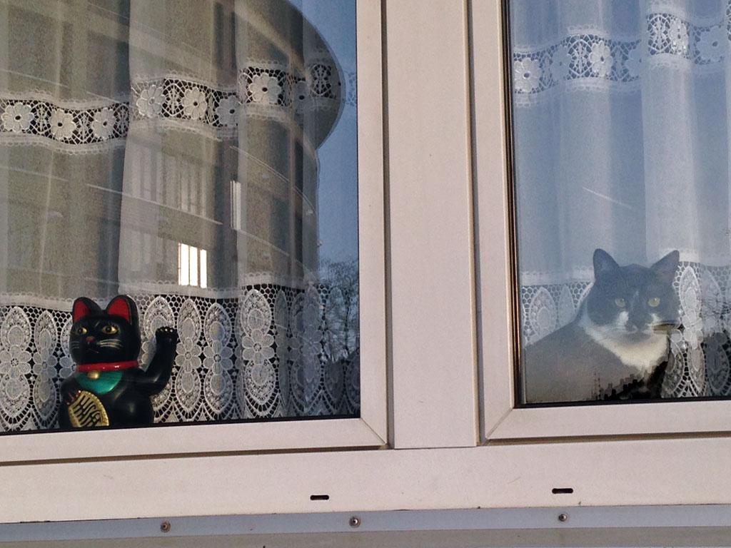 Winkekatze und echte Katze