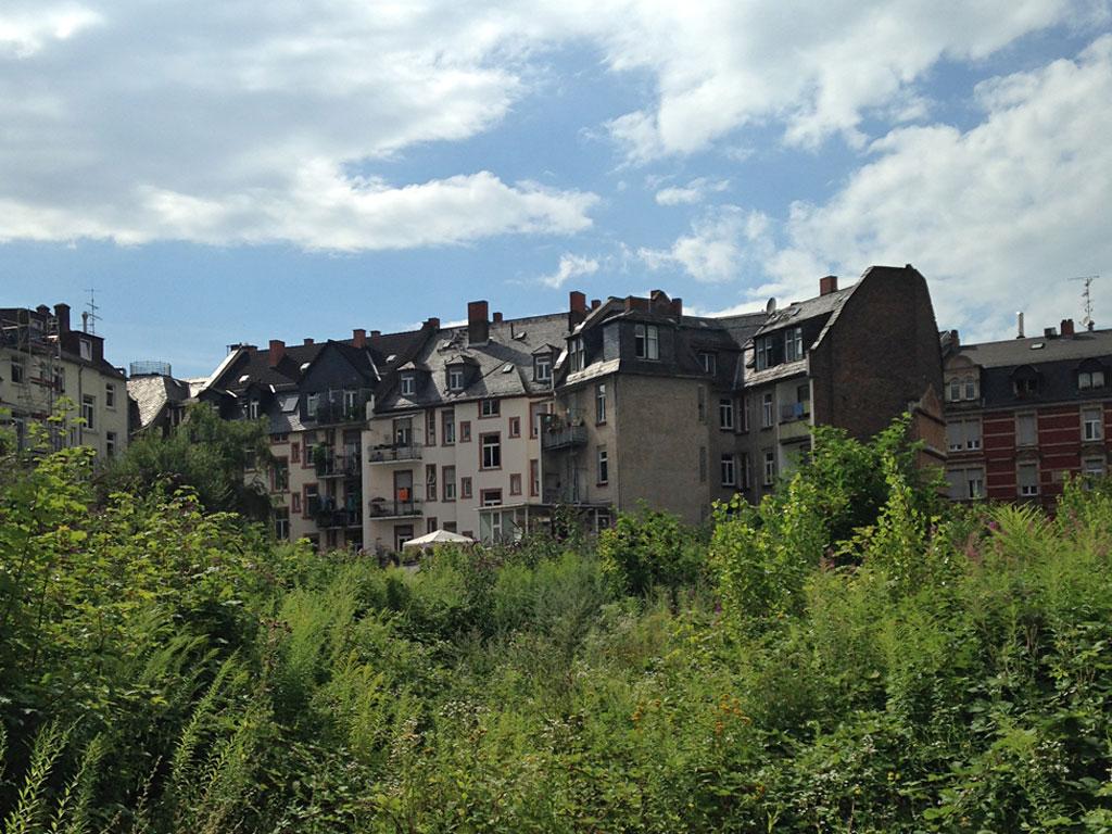 The Bornheim Jungle