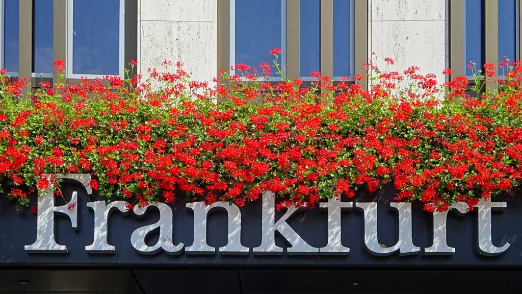 Frankfurt-Bahnhofsviertel: Frankfurt-Hotel
