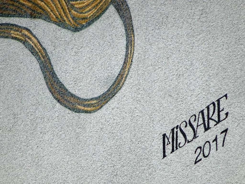 Signature: MISSARE 2017