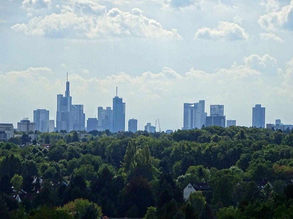 Blick vom Lohrberg auf einen Teil der Frankfurter Skyline