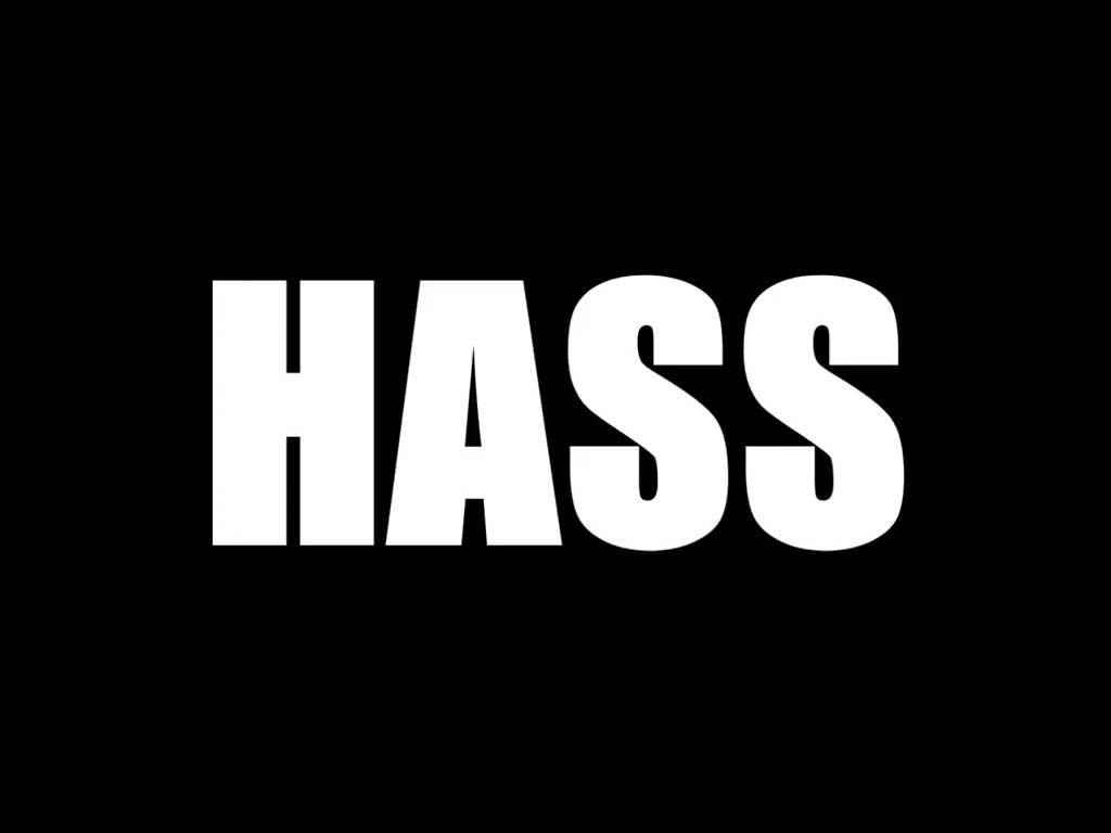 HASS - Bis hierher lief's noch ganz gut
