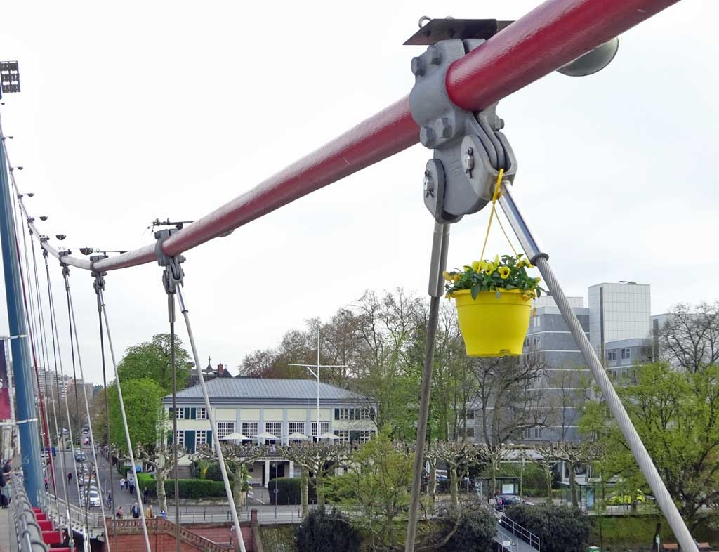 Guerilla Gardening mit Blumentopf