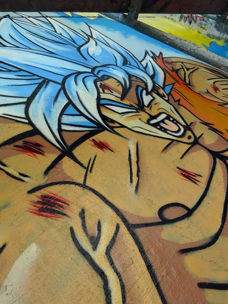 Dragon Ball Z-Graffiti am Niddapark