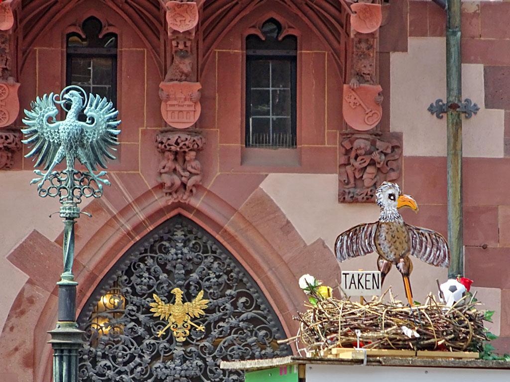 Adler mit Nest am Römer in Frankfurt