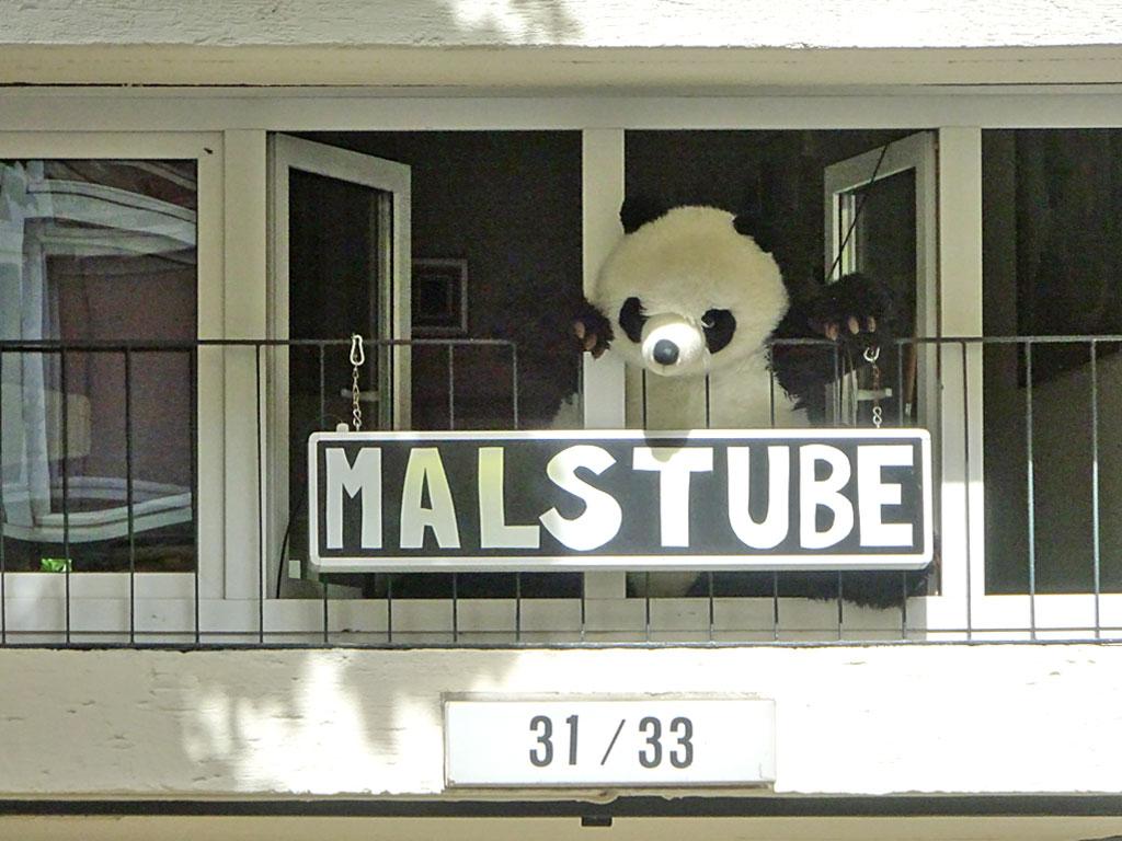 Panda chillt am Fenster der Malstube
