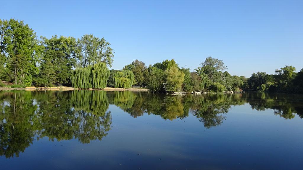 Spiegelung im Ostparkweiher