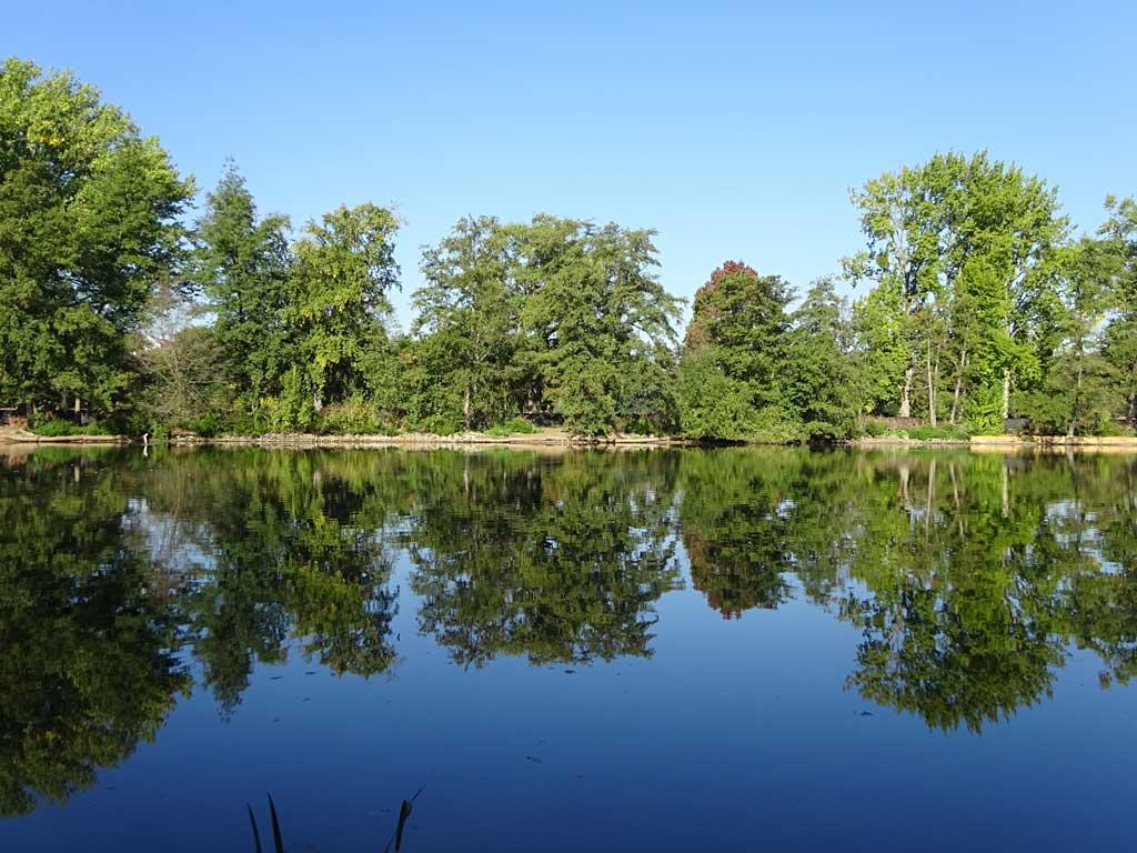 Reflexion auf der Wasseroberfläche