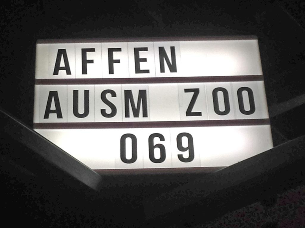 Affen ausm Zoo 069