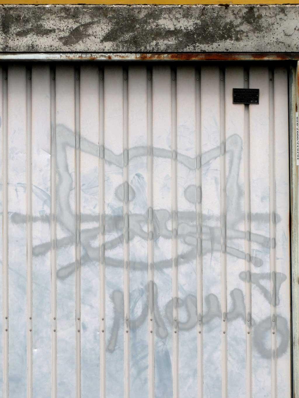 Garage Door Graffiti with a cat
