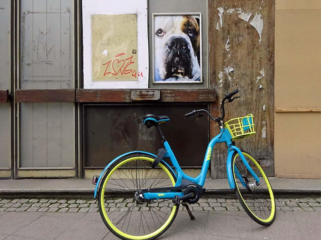 Gerahmtes Poster mit Hund in Frankfurt