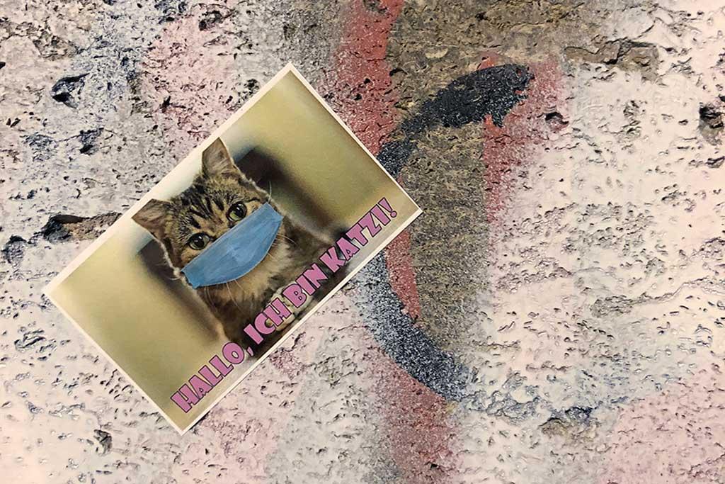 Aufkleber einer Katze mit Mund-Nasen-Schutz