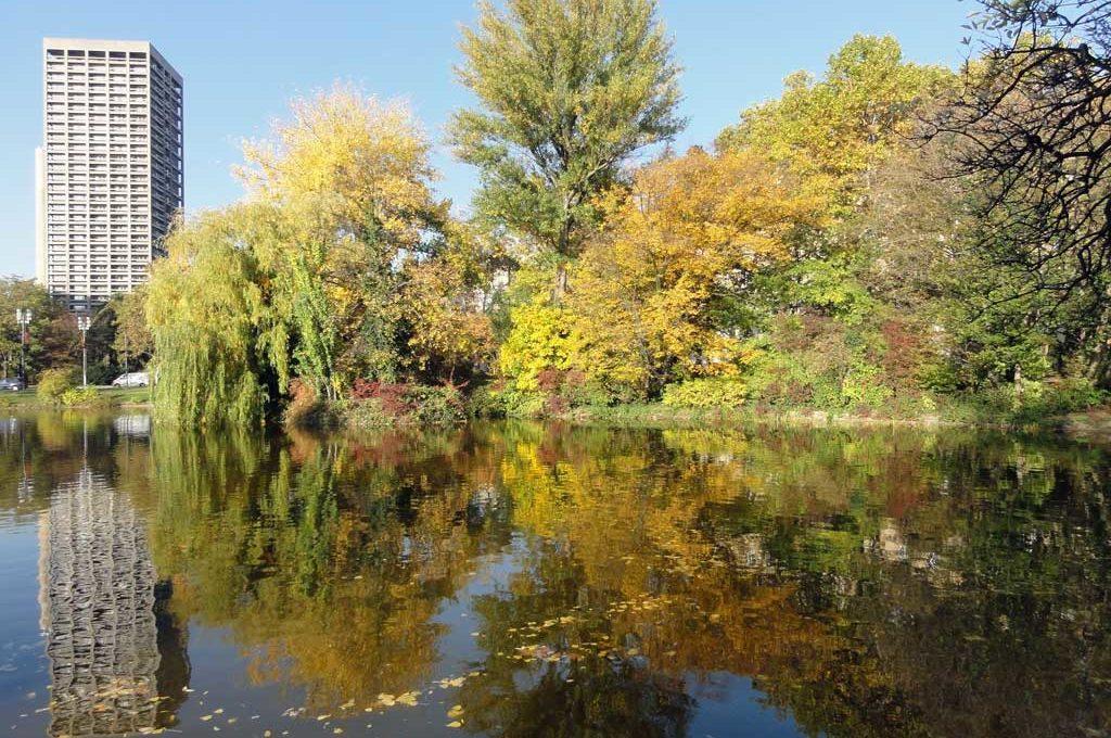 Herbst an der Ludwig Erhard Anlage in Frankfurt
