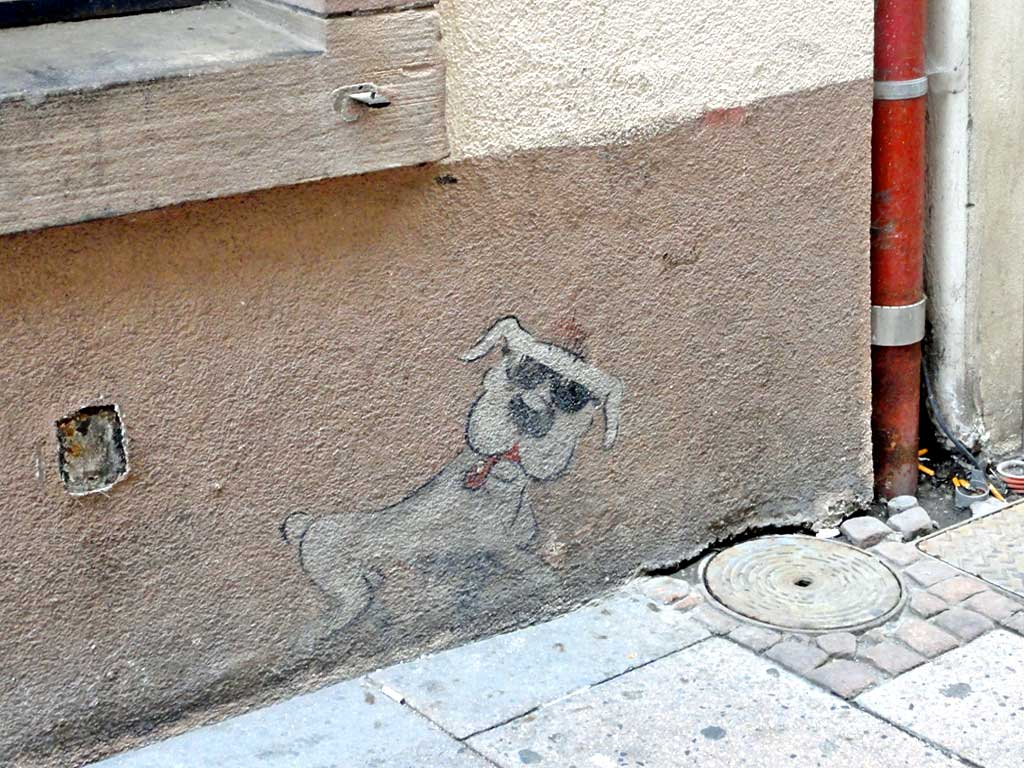 Wandbild eines Hundes mit Sonnenbrille