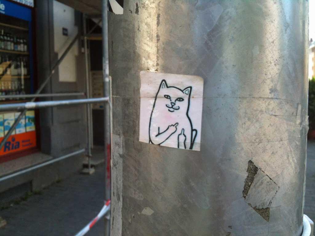 Streetart - Katze zeigt Mittelfinger
