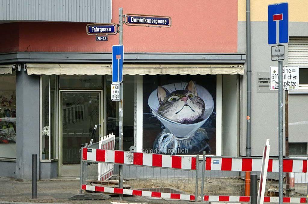 Katzenbild im Schaufenster der Galerie Greulich